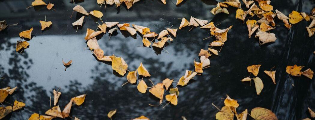 Changement de saison - les reflexes bien-être à adopter